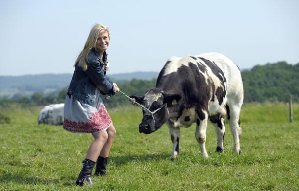 femme vache paysan agricole pré amour