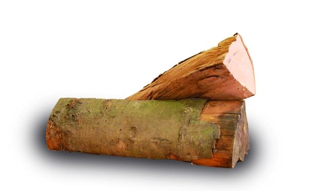 La victime a été frappée avec une bûche de bois